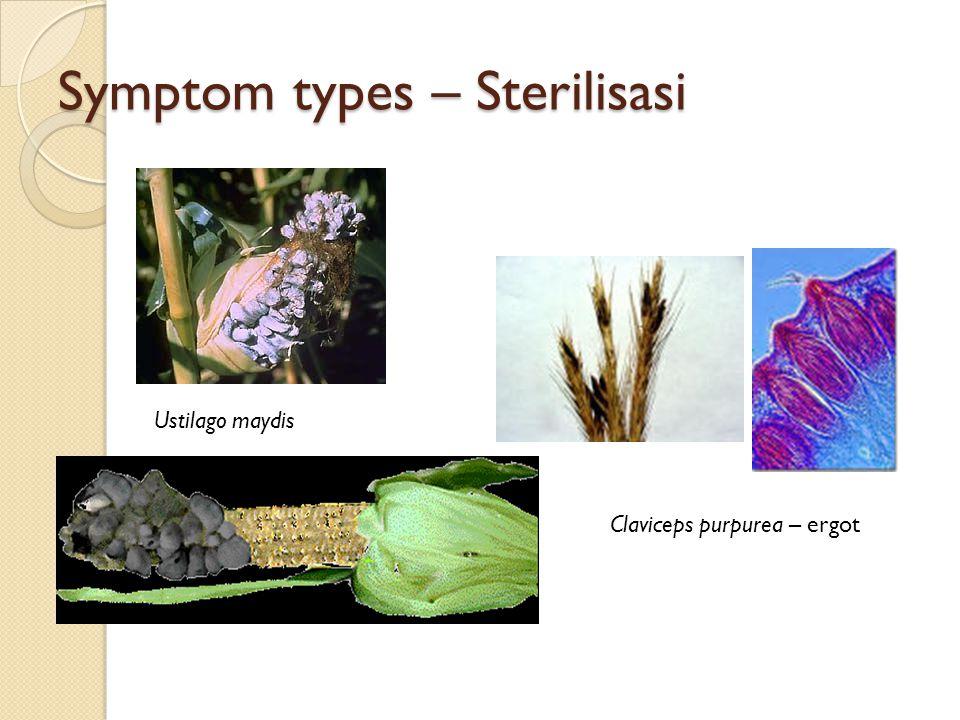 Symptom types – Sterilisasi
