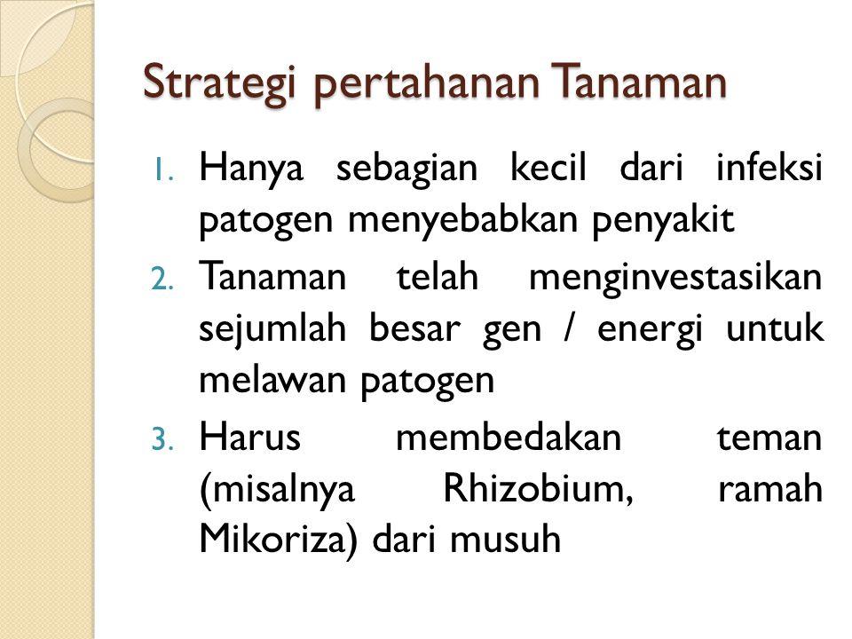 Strategi pertahanan Tanaman
