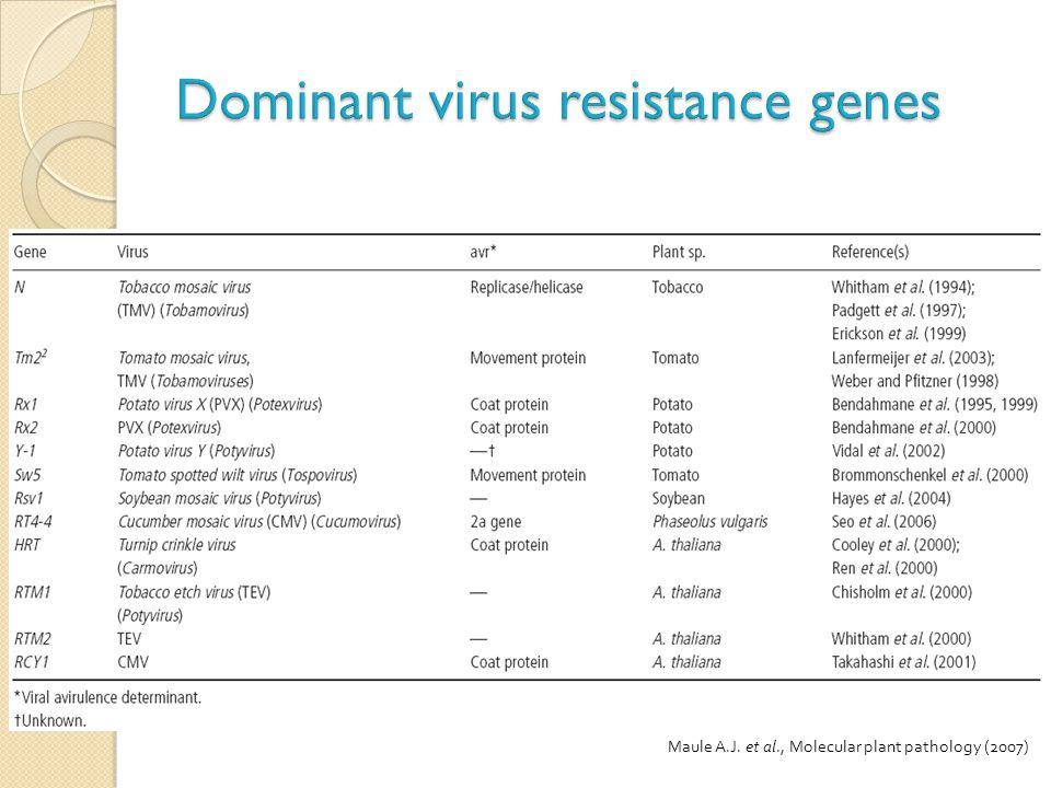 Dominant virus resistance genes