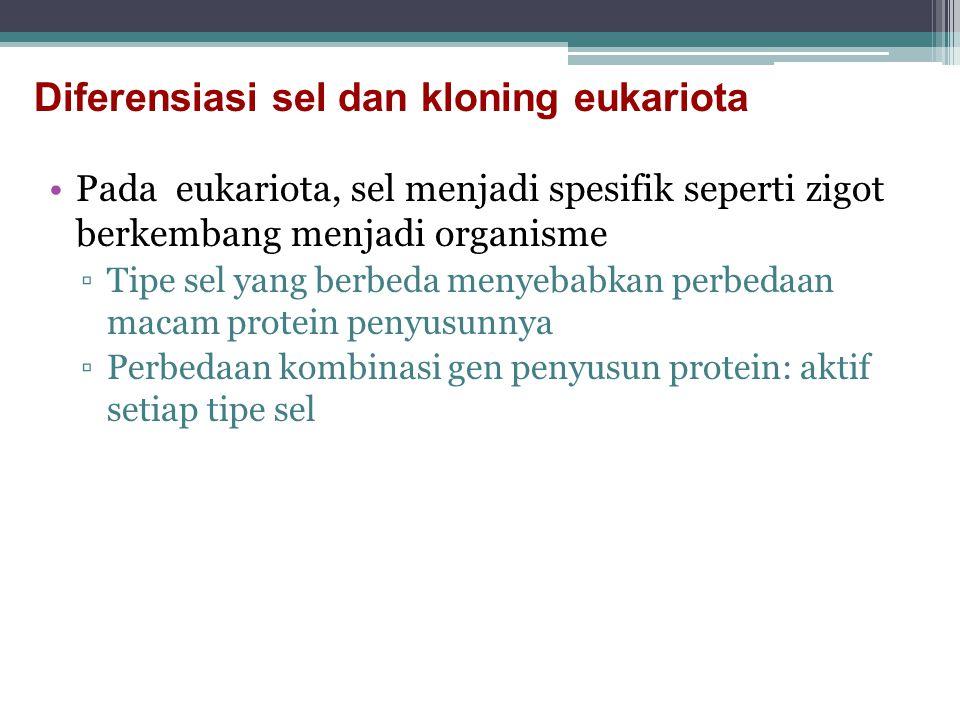 Diferensiasi sel dan kloning eukariota