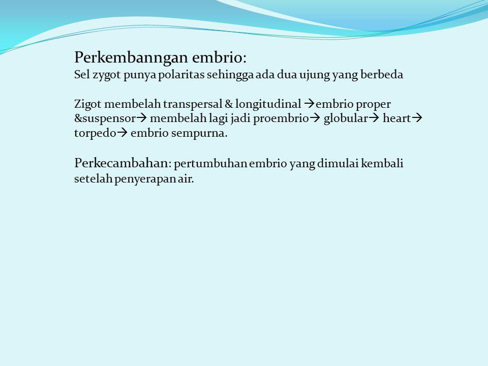 Perkembanngan embrio: