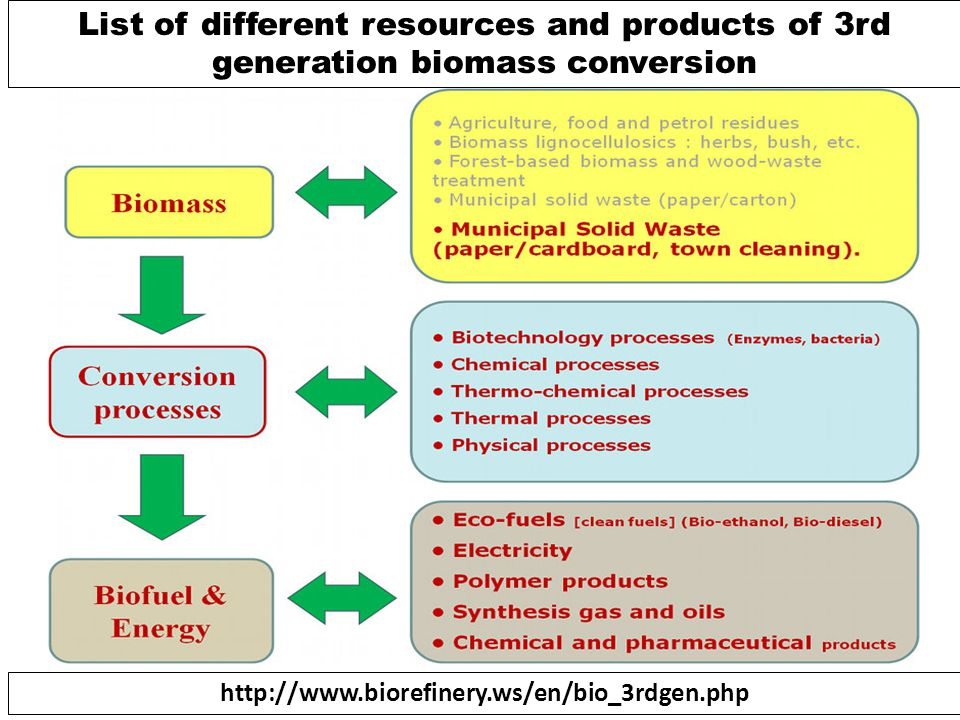List of different resources and products of 3rd generation biomass conversion
