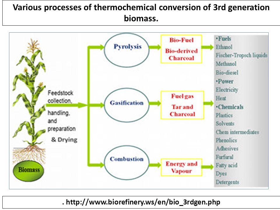 . http://www.biorefinery.ws/en/bio_3rdgen.php