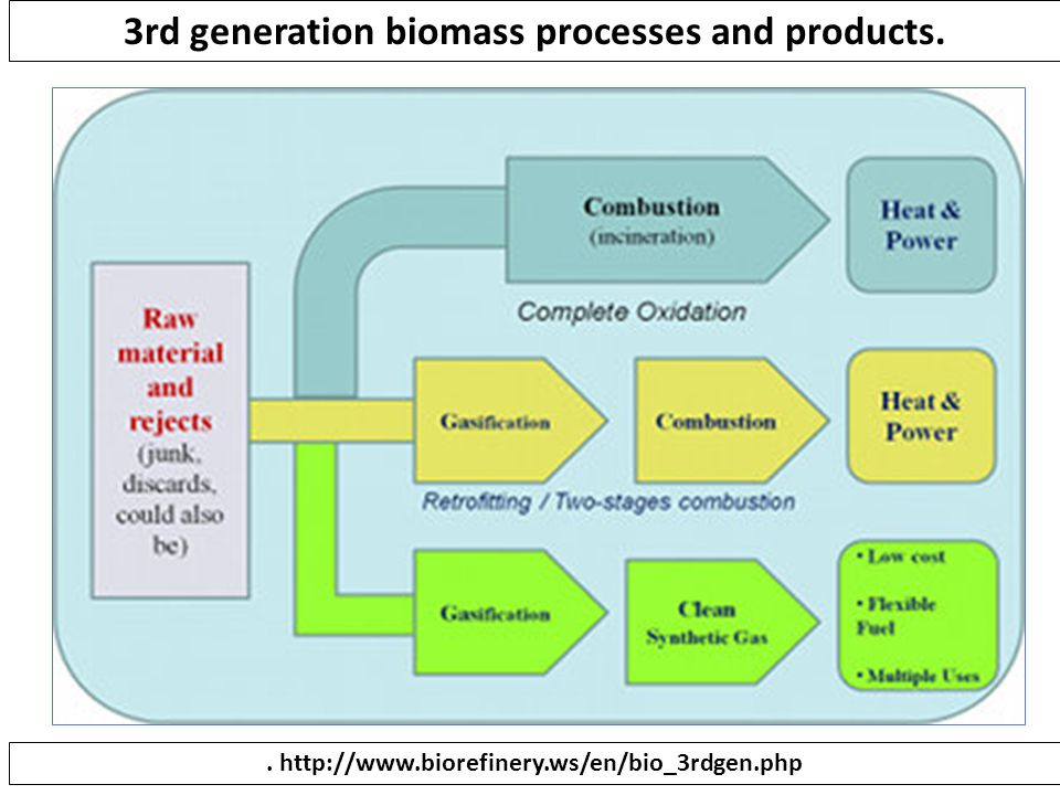 3rd generation biomass processes and products.