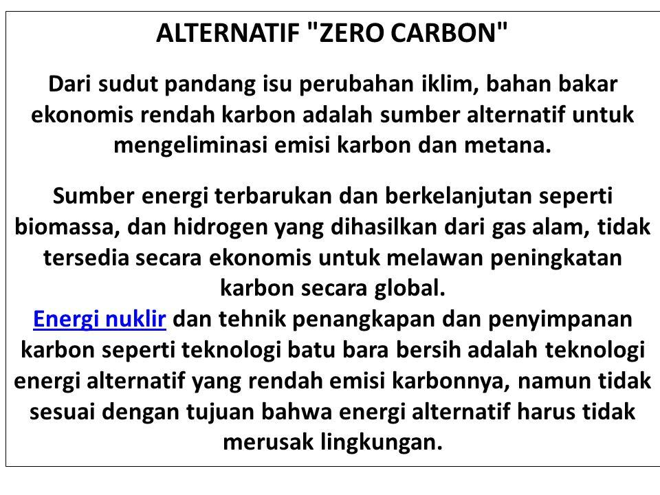 ALTERNATIF ZERO CARBON