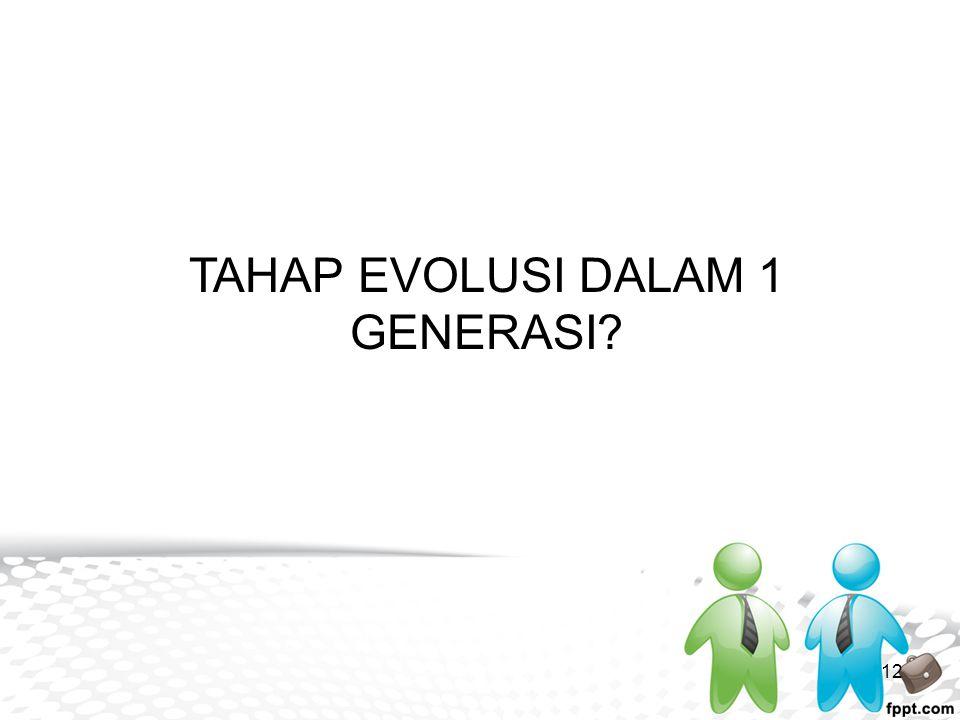 TAHAP EVOLUSI DALAM 1 GENERASI