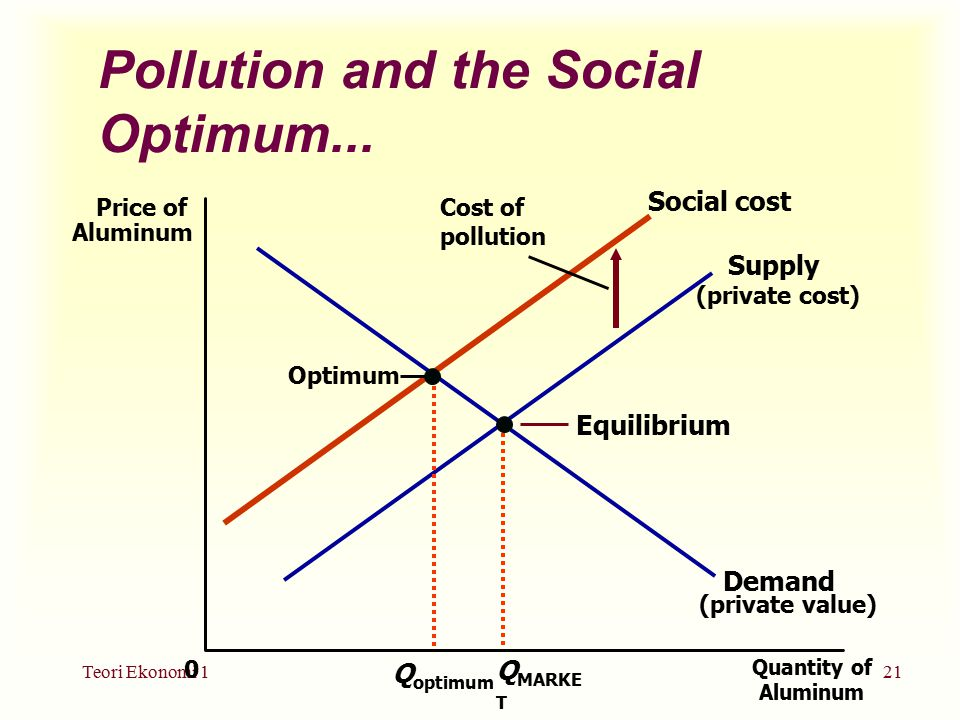 Pollution and the Social Optimum...