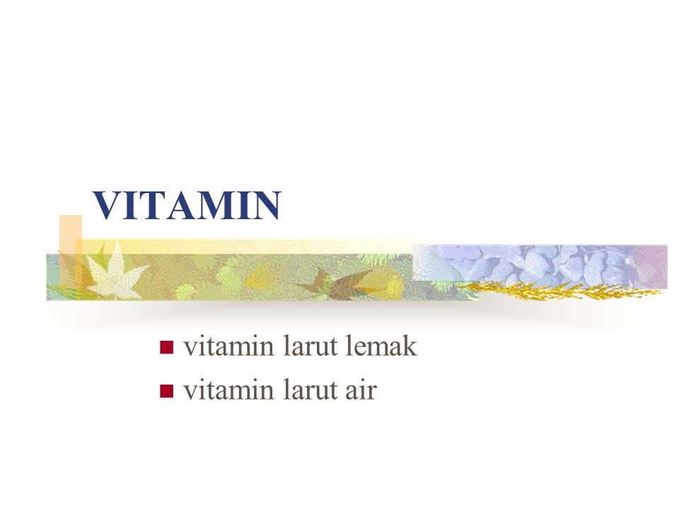 vitamin larut lemak vitamin larut air