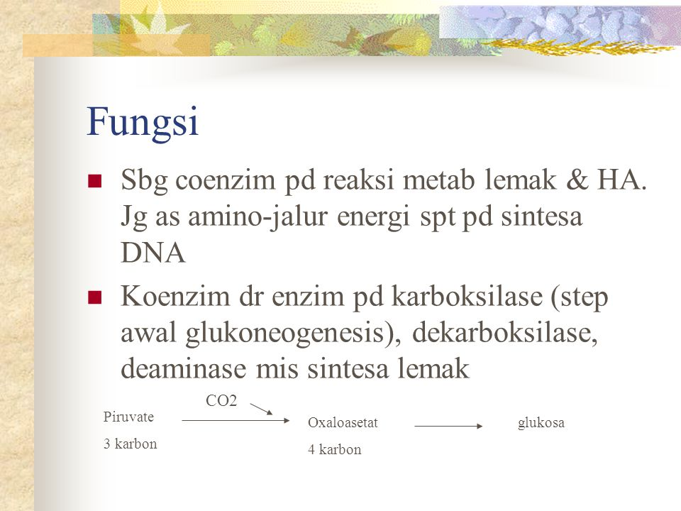 Fungsi Sbg coenzim pd reaksi metab lemak & HA. Jg as amino-jalur energi spt pd sintesa DNA.