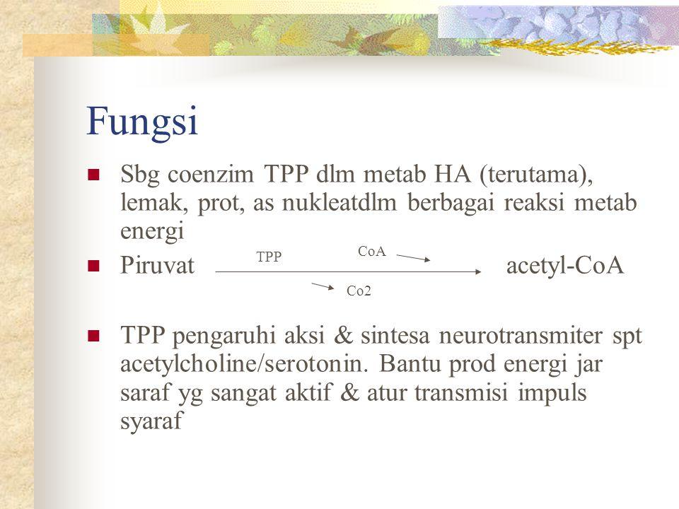 Fungsi Sbg coenzim TPP dlm metab HA (terutama), lemak, prot, as nukleatdlm berbagai reaksi metab energi.