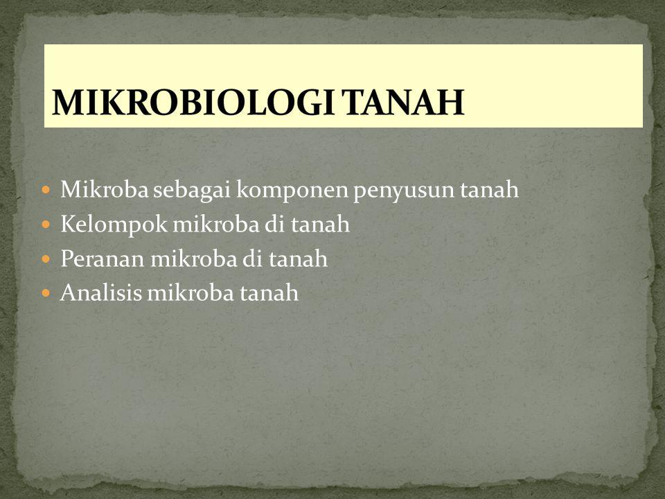 MIKROBIOLOGI TANAH Mikroba sebagai komponen penyusun tanah