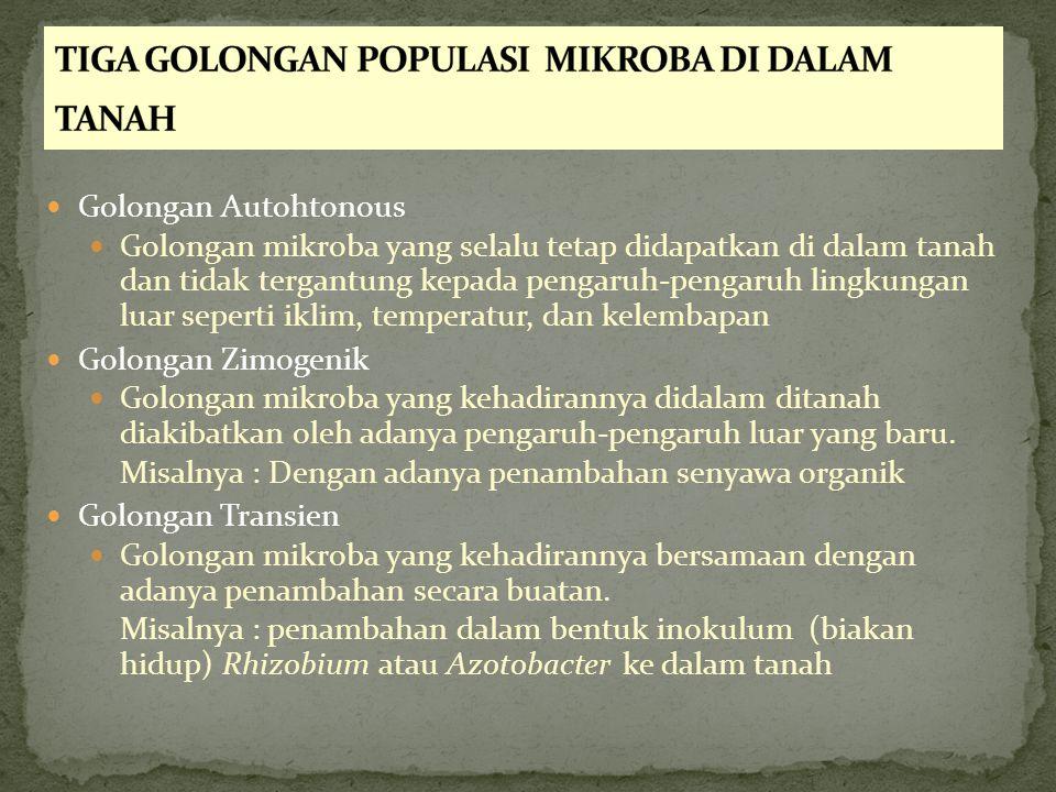 TIGA GOLONGAN POPULASI MIKROBA DI DALAM TANAH