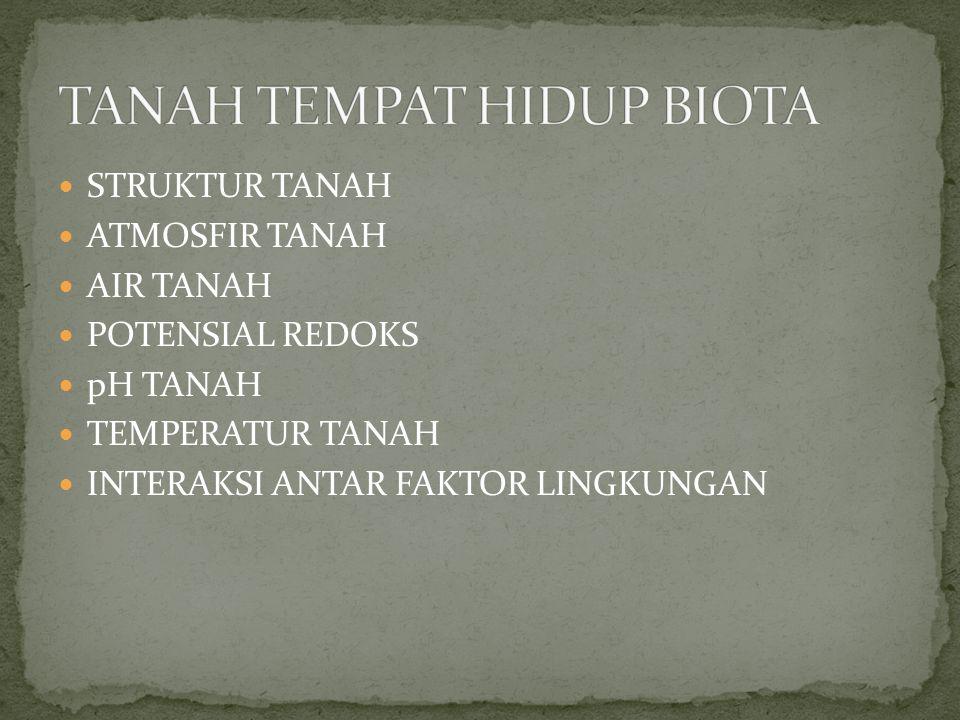 TANAH TEMPAT HIDUP BIOTA