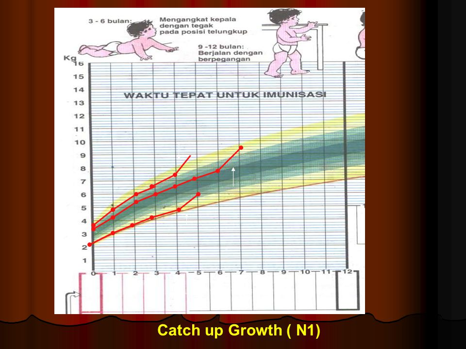 Catch up Growth ( N1)