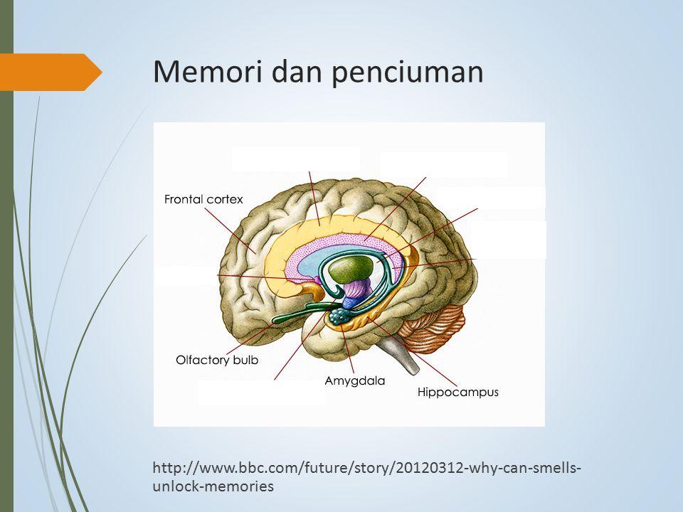 Memori dan penciuman http://www.bbc.com/future/story/20120312-why-can-smells- unlock-memories