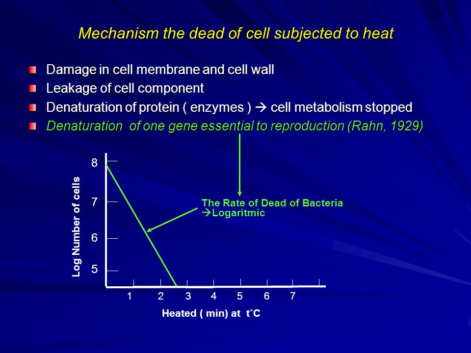 Mechanism the dead of cell subjected to heat