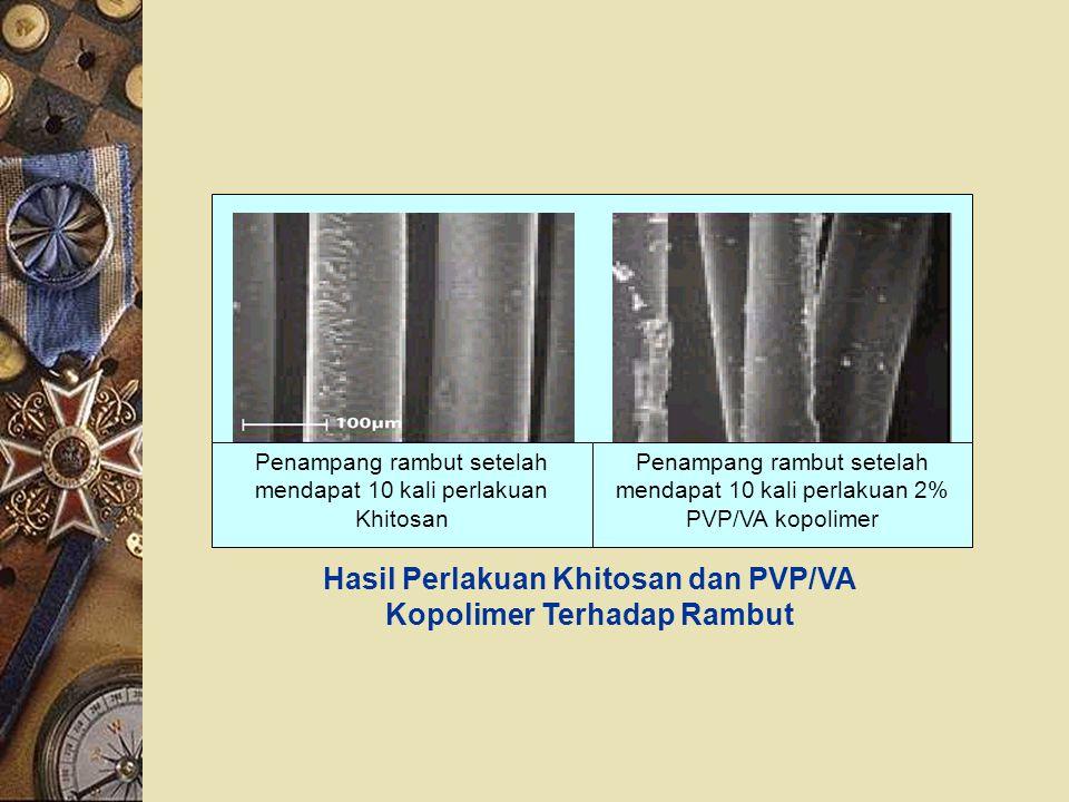 Hasil Perlakuan Khitosan dan PVP/VA Kopolimer Terhadap Rambut