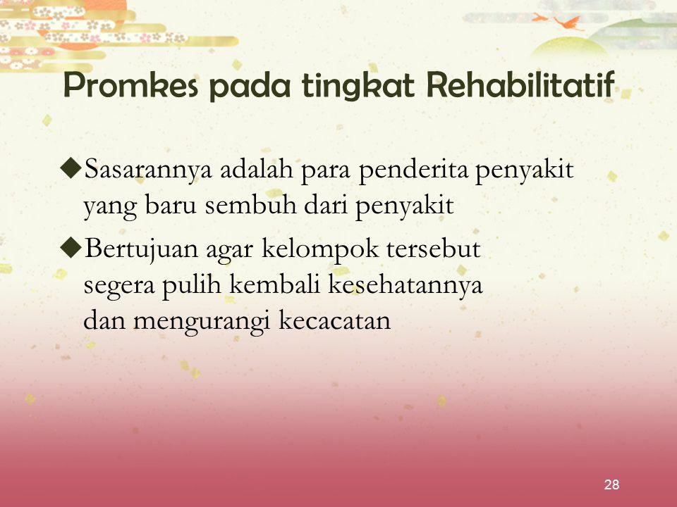 Promkes pada tingkat Rehabilitatif