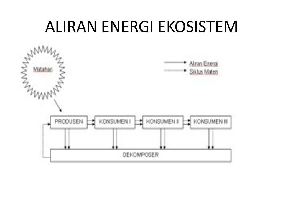 ALIRAN ENERGI EKOSISTEM