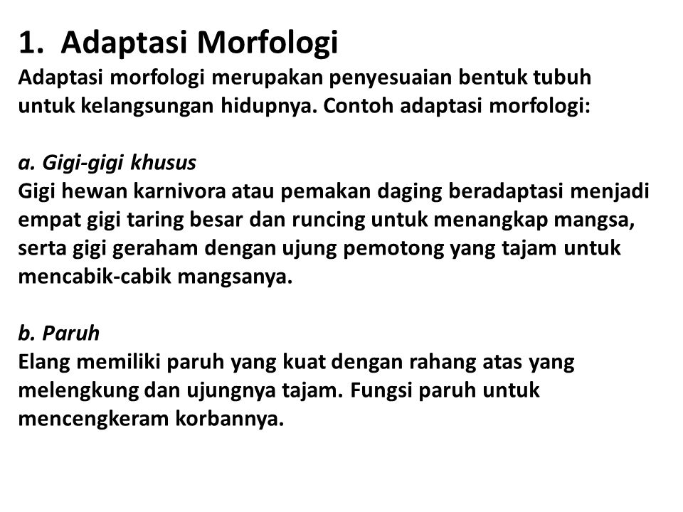 1. Adaptasi Morfologi Adaptasi morfologi merupakan penyesuaian bentuk tubuh untuk kelangsungan hidupnya. Contoh adaptasi morfologi: