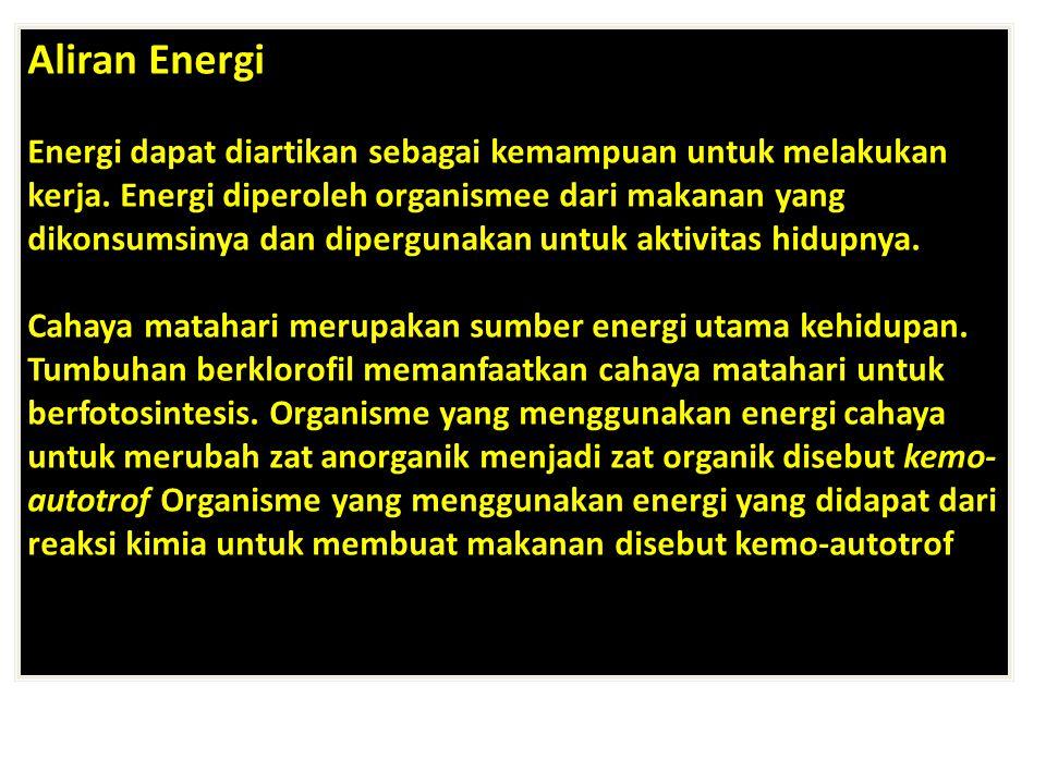 Aliran Energi