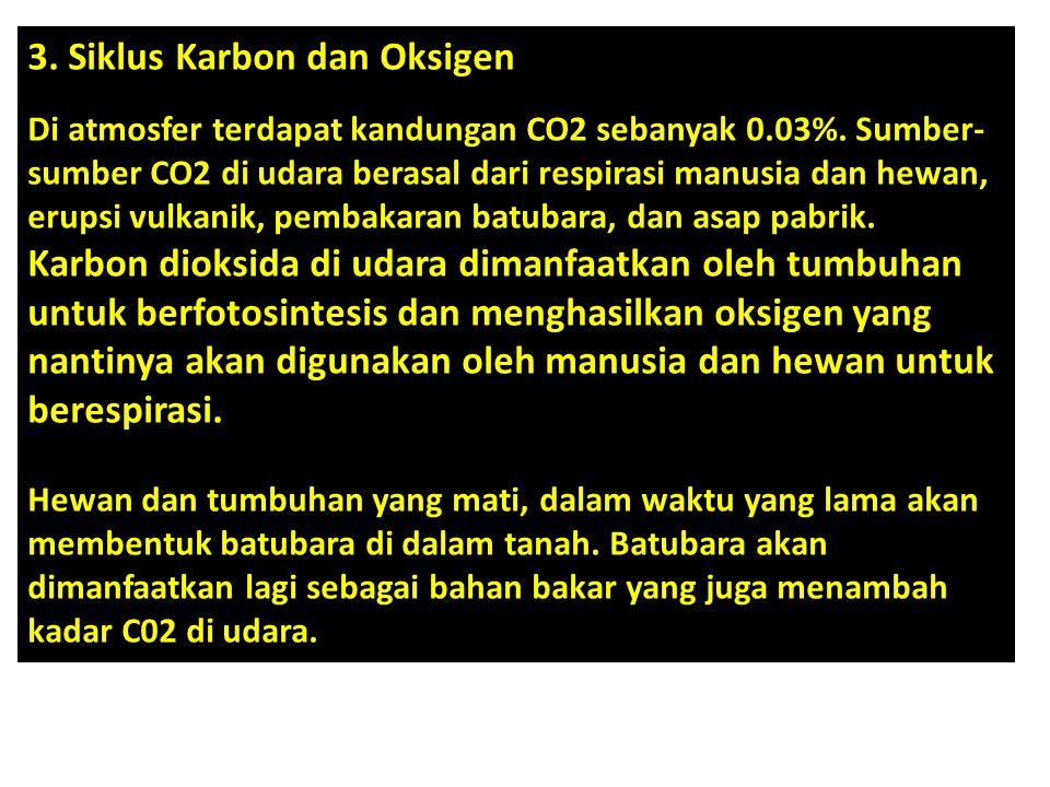 3. Siklus Karbon dan Oksigen