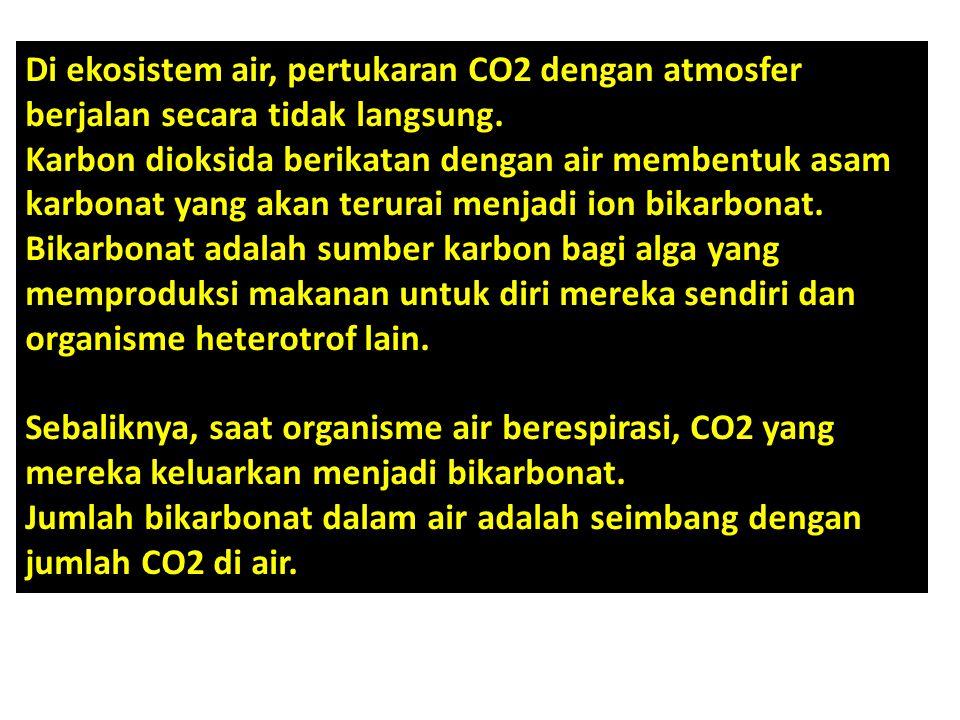 Di ekosistem air, pertukaran CO2 dengan atmosfer berjalan secara tidak langsung.