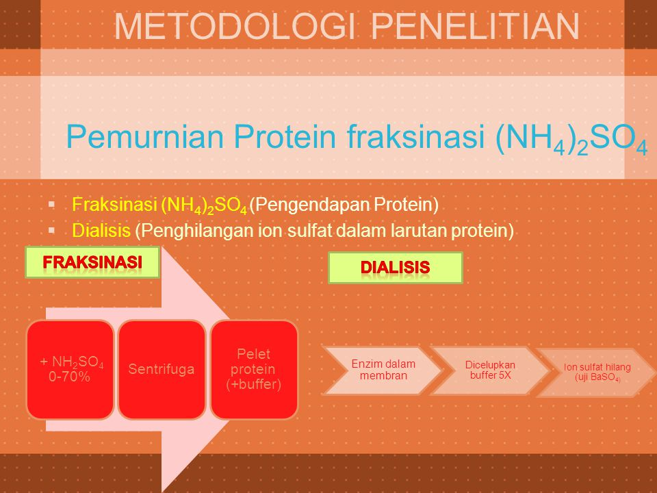 Pemurnian Protein fraksinasi (NH4)2SO4