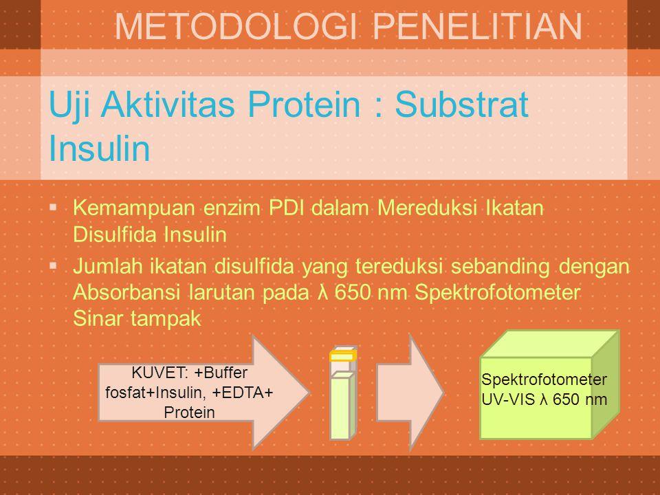Uji Aktivitas Protein : Substrat Insulin