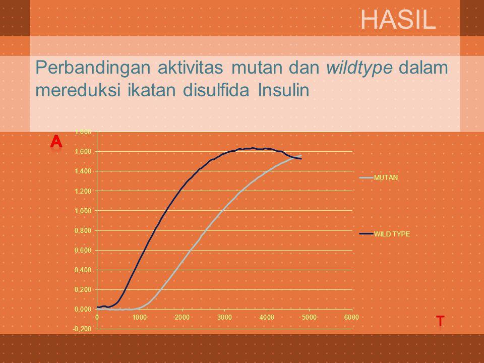 HASIL Perbandingan aktivitas mutan dan wildtype dalam mereduksi ikatan disulfida Insulin A t