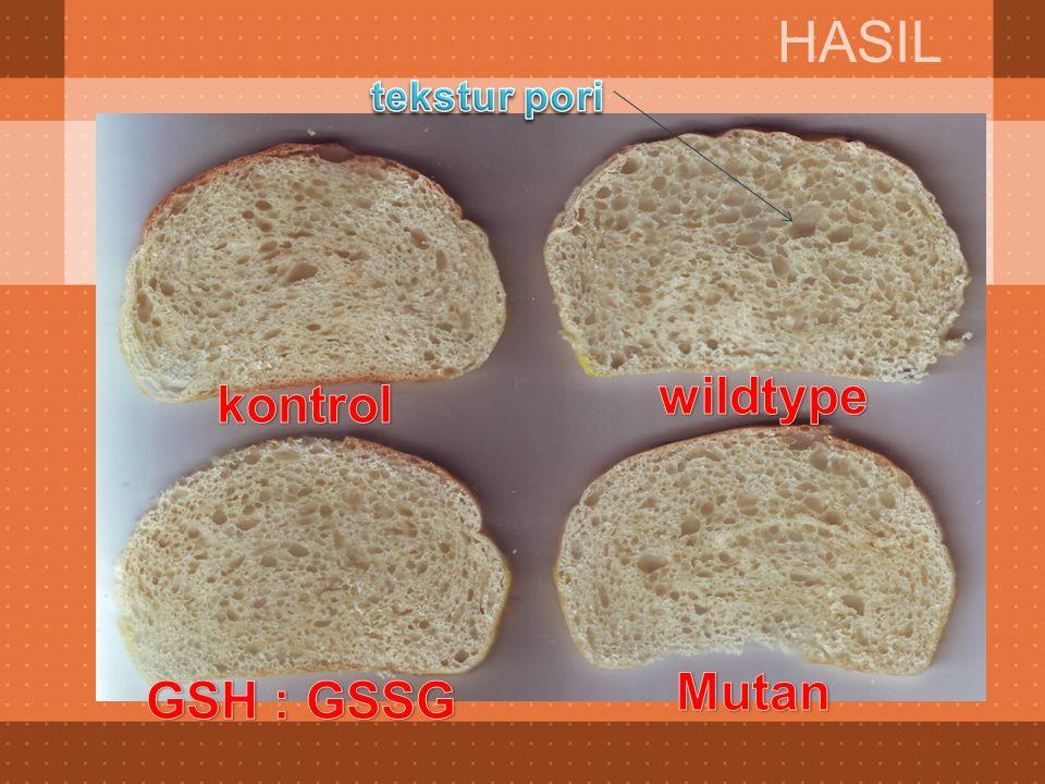 HASIL tekstur pori wildtype kontrol Mutan GSH : GSSG