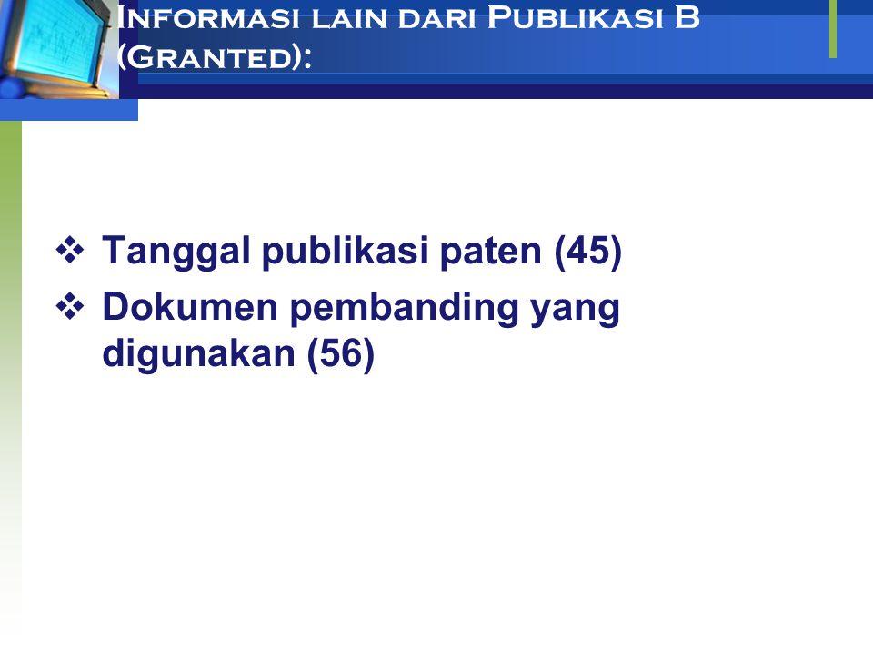 Informasi lain dari Publikasi B (Granted):