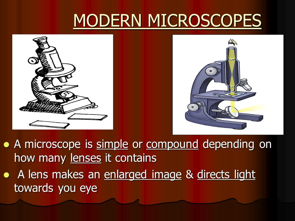 MODERN MICROSCOPES A microscope is simple or compound depending on how many lenses it contains.