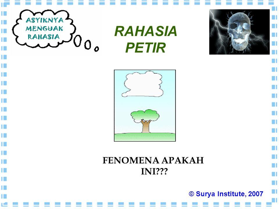 RAHASIA PETIR FENOMENA APAKAH INI © Surya Institute, 2007