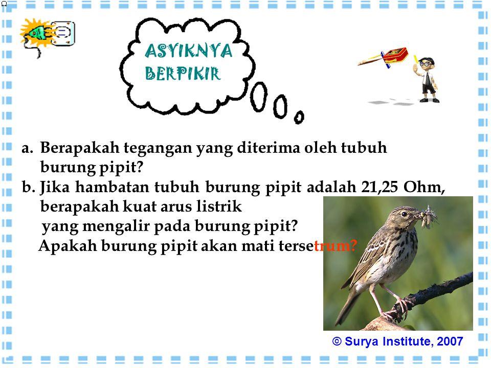 Berapakah tegangan yang diterima oleh tubuh burung pipit