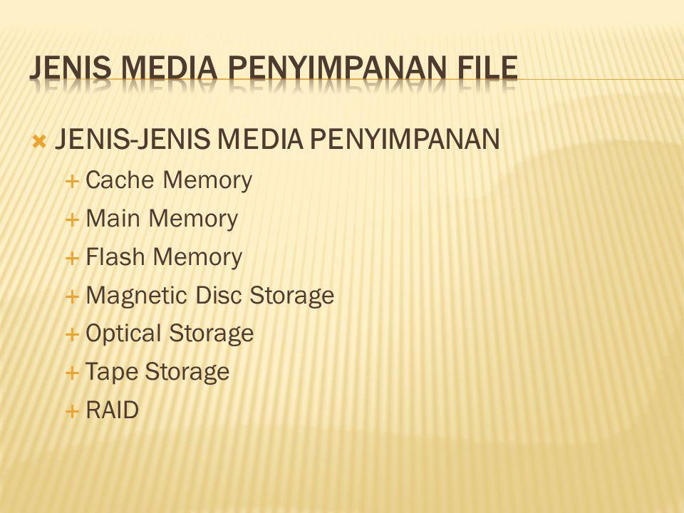 Jenis media penyimpanan file