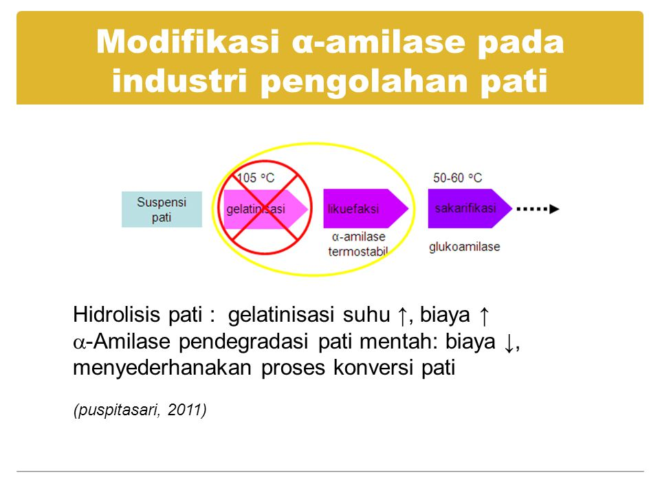 Modifikasi α-amilase pada industri pengolahan pati