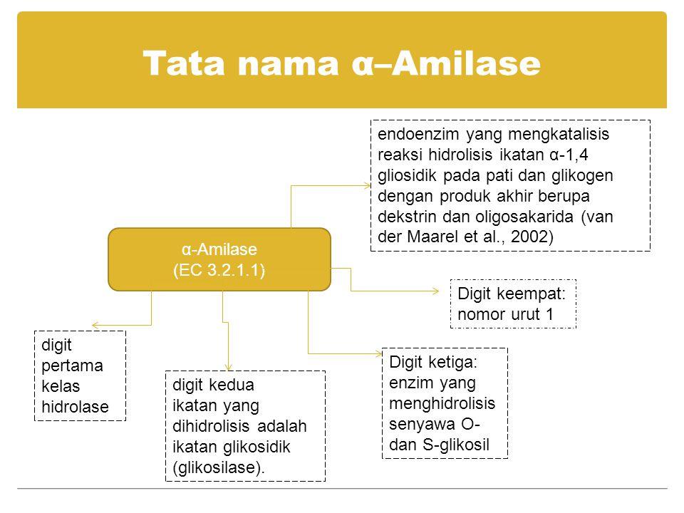 Tata nama α–Amilase