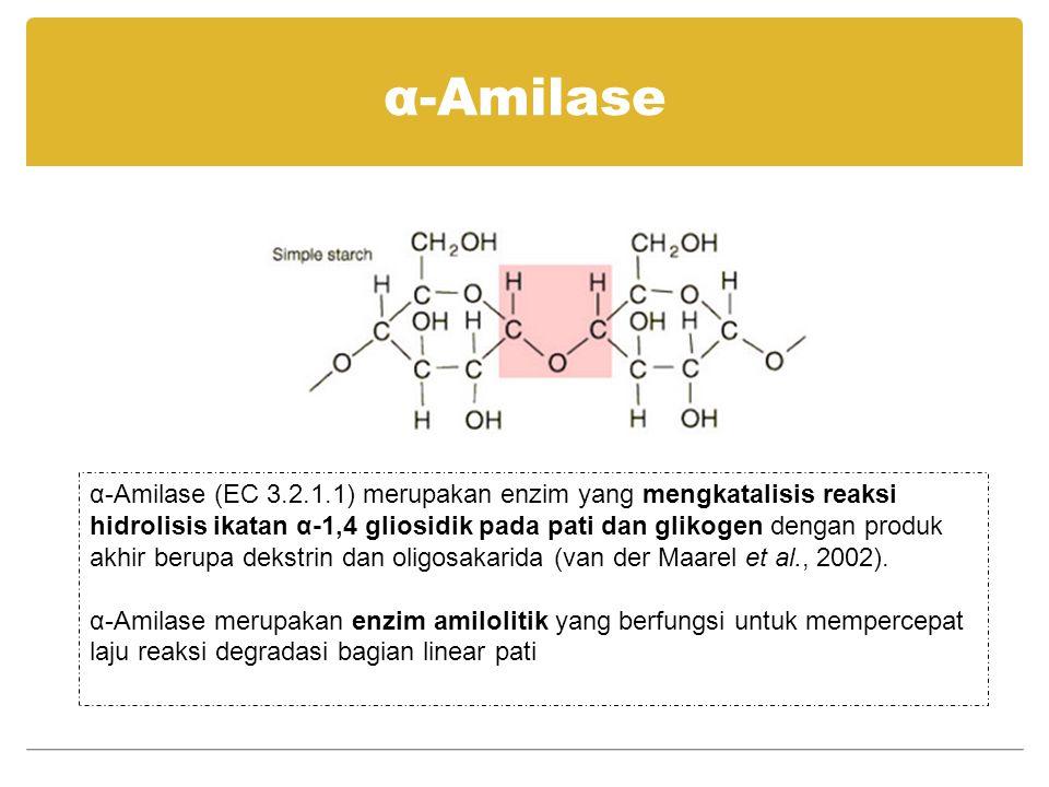 α-Amilase