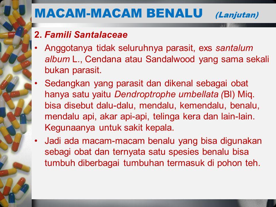 MACAM-MACAM BENALU (Lanjutan)