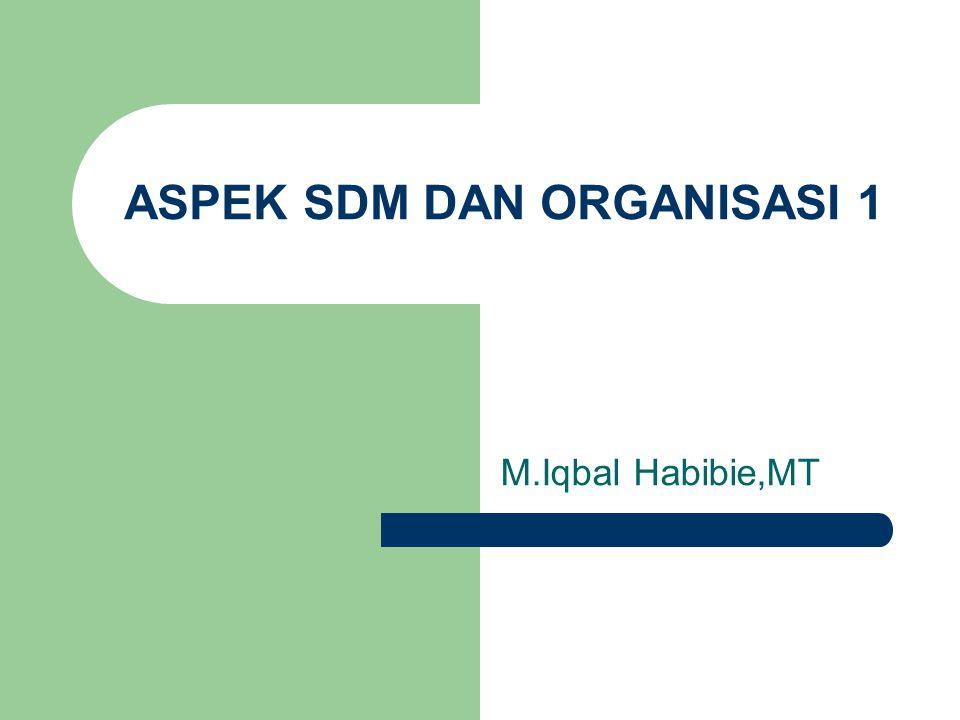 ASPEK SDM DAN ORGANISASI 1