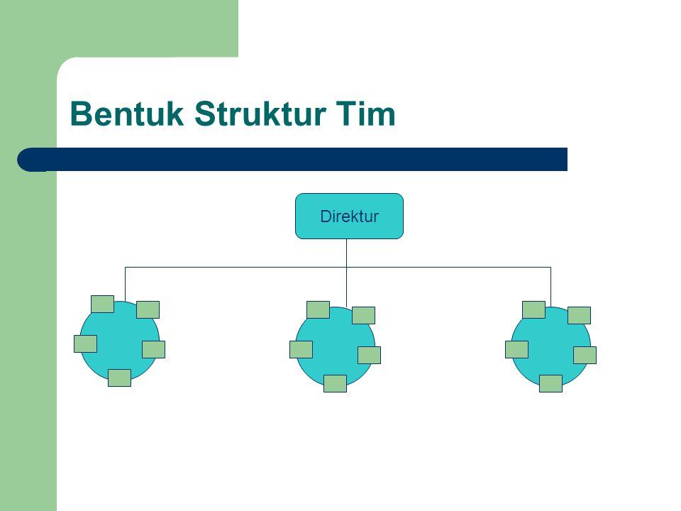 Bentuk Struktur Tim Direktur