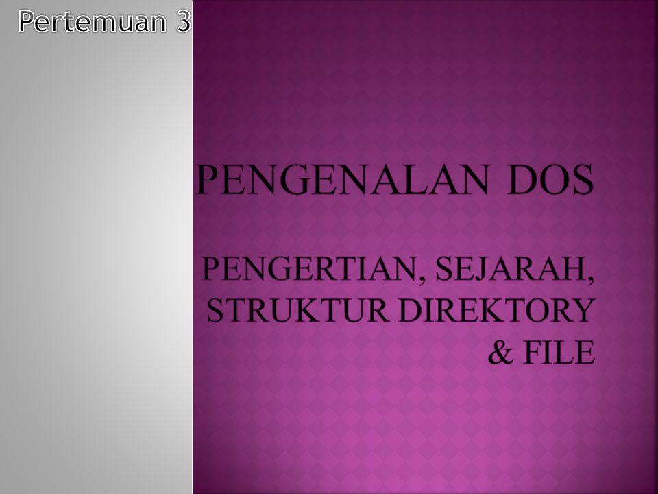 PENGENALAN DOS Pengertian, Sejarah, Struktur Direktory & File