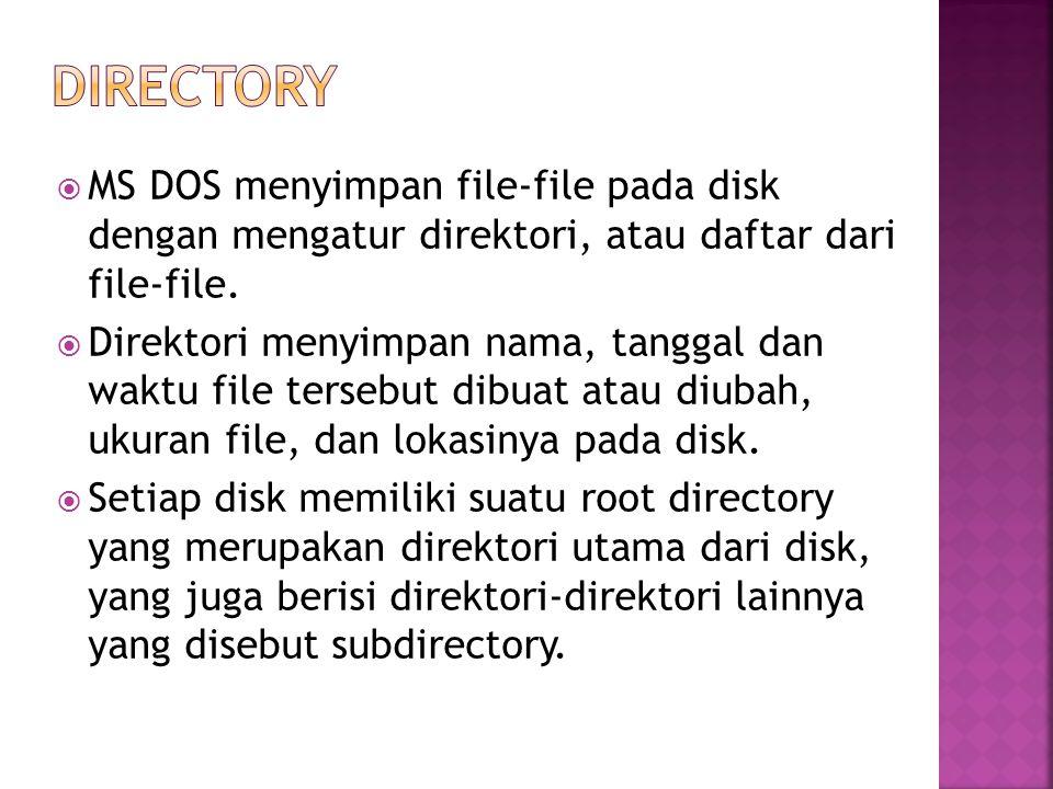 directory MS DOS menyimpan file-file pada disk dengan mengatur direktori, atau daftar dari file-file.