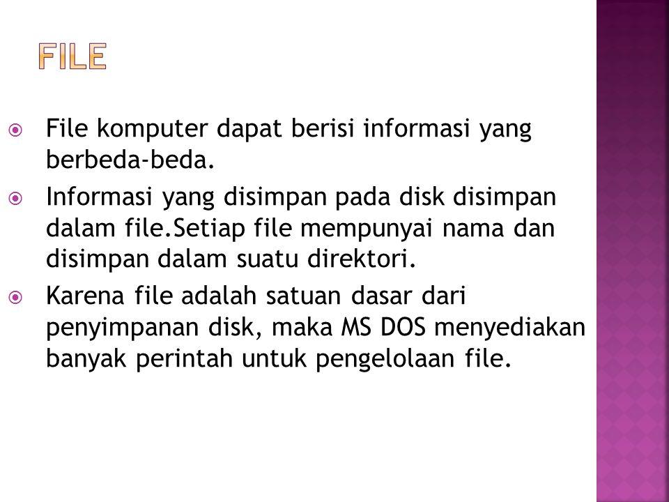file File komputer dapat berisi informasi yang berbeda-beda.