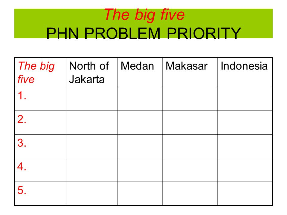 The big five PHN PROBLEM PRIORITY