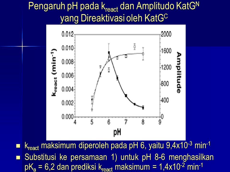 Pengaruh pH pada kreact dan Amplitudo KatGN yang Direaktivasi oleh KatGC