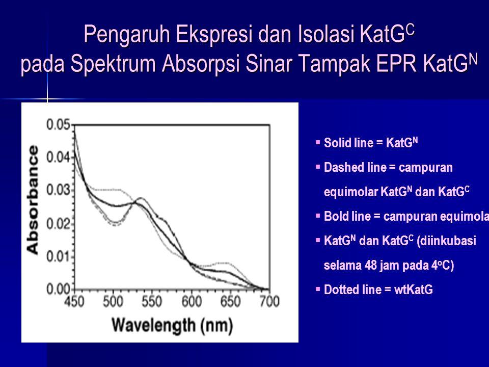 Pengaruh Ekspresi dan Isolasi KatGC pada Spektrum Absorpsi Sinar Tampak EPR KatGN