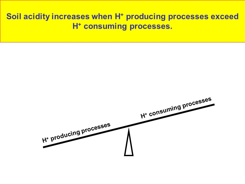 Soil acidity increases when H+ producing processes exceed H+ consuming processes.