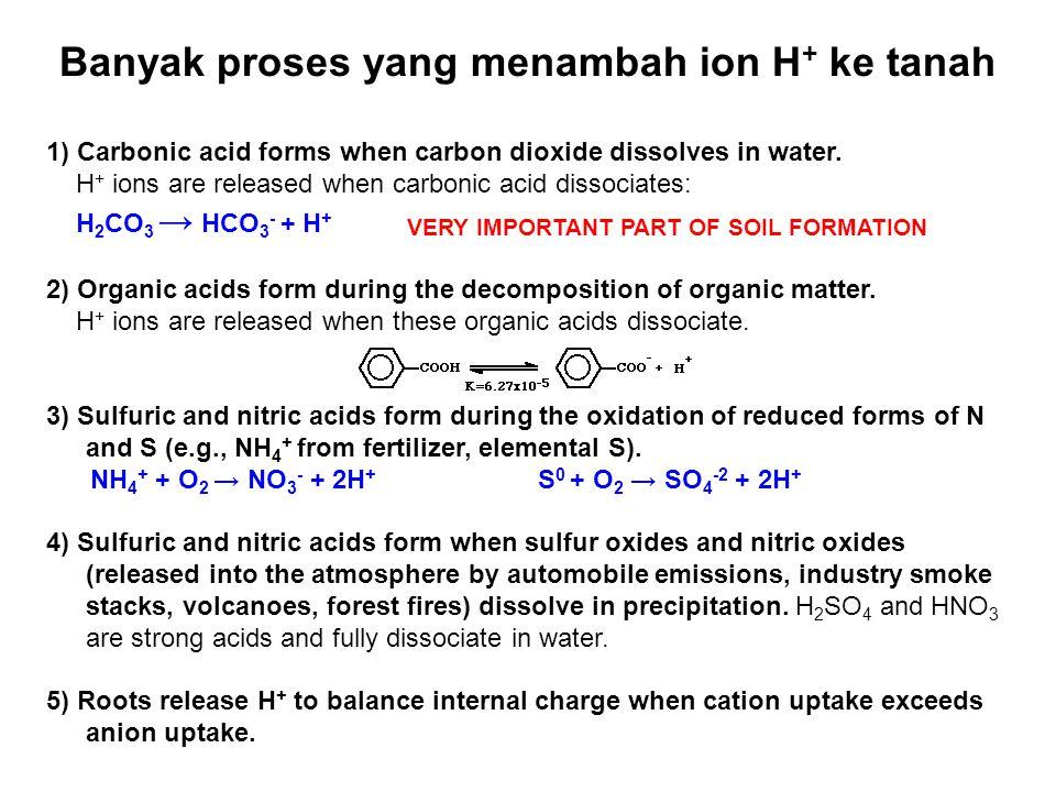 Banyak proses yang menambah ion H+ ke tanah